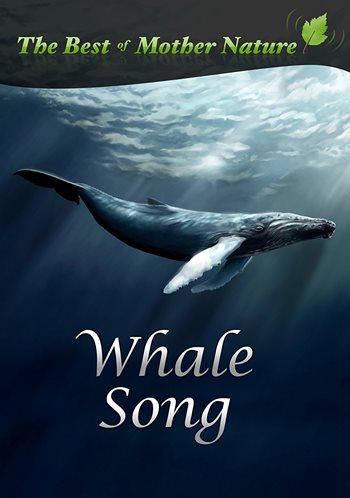 دانلود آهنگ تنهاترین نهنگ دنیا Whale از Iday موزیک بازان